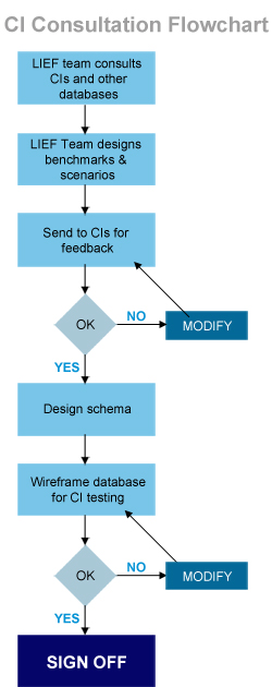 CI Consultation Diagram